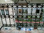 Wrought Iron Belgrade - Terraces_25